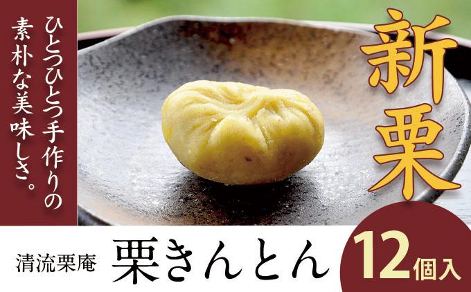 【新栗】栗のつぶつぶ食感!昔ながらの伝統の味「栗きんとん」(12個入)