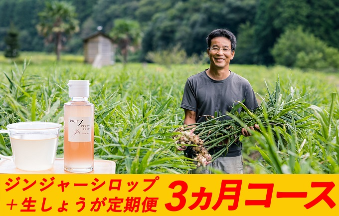 【3ヵ月便】日本一の生姜もお届け!四万十生姜とジンジャーシロップ