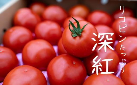 赤さがリコピン満載の証!四万十産トマト「深紅」4㎏
