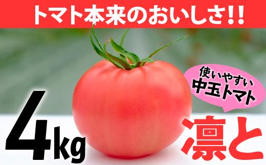 受付4か月で800件超え四万十産トマト「凛と」