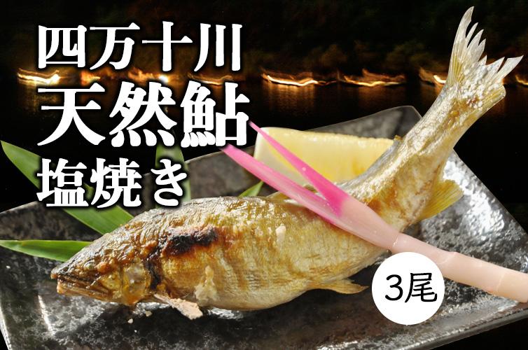 天然鮎の塩焼き(3匹)